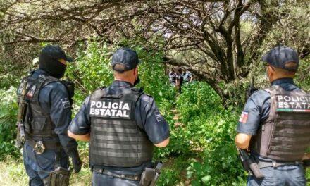 ¡Hombre se mató ahorcándose en un árbol en el Parque La Pona en Aguascalientes!