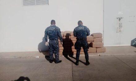 ¡BOM de Jerez detuvo a un sujeto con un cargamento de 446 kilos de marihuana!
