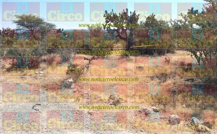 Hallan a un hombre ejecutado camino al rancho Alto de Moya en Lagos de Moreno