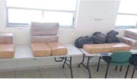 ¡Fiscalía de Aguascalientes aseguró 98 kilos de cannabis en cateo domiciliario!
