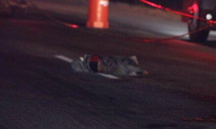 ¡Hombre murió atropellado y destrozado por camiones de carga en Aguascalientes!