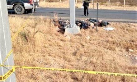 ¡Hallaron a 7 hombres ejecutados en la zona limítrofe entre San Luis Potosí y Zacatecas!