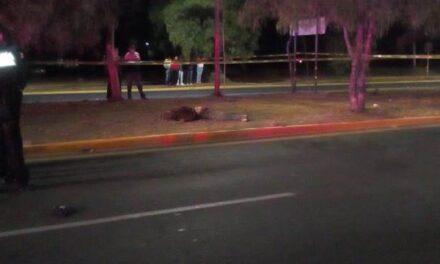 ¡Hombre murió atropellado por un policía estatal en Aguascalientes!