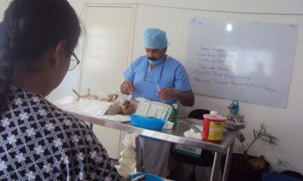 ¡Inaugura Pabellón de Arteaga el primer hospital veterinario público en la entidad!