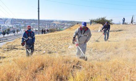 ¡Municipio de Aguascalientes realizó brigada de limpieza en Pensadores Mexicanos!