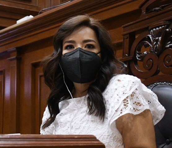 ¡Irresponsable que diputados vayan a pedir voto si no cumplieron encomienda en el Congreso: Elsa Landín Olivares!