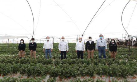 ¡Inauguran carrera en Agrotecnología en CONALEP Aguascalientes, primera a nivel nacional!