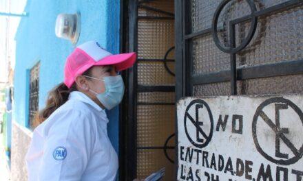 ¡Impulsará Laura Ponce tenencia responsable de mascotas y trato digno a animales callejeros!