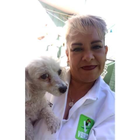 ¡PVEM propone la creación de hospitales para mascotas: Coco López!