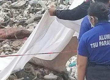 ¡Hallaron a un bebé muerto entre la basura en el relleno sanitario en Aguascalientes!