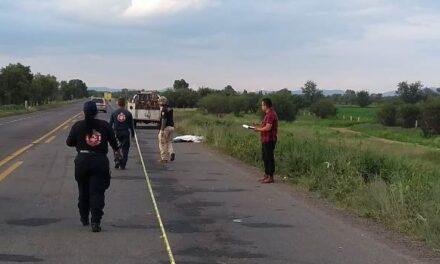 ¡Ciclista murió embestido por una camioneta en Rincón de Romos, Aguascalientes!