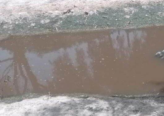 ¡Hallaron a un hombre muerto flotando en el Río San Pedro en Aguascalientes!