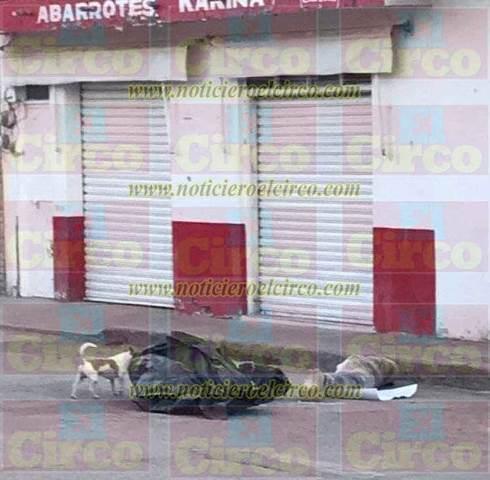 ¡Ejecutaron a dos hombres y una mujer y tiraron sus cuerpos envueltos en plástico en Villa García!
