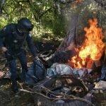 ¡Desmantelaron dos narco-campamentos en comunidades de Guadalupe y Jerez!